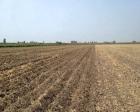 Yabancılara tarım arazisi satışı nasıl yapılacak?
