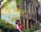 Beyoğlu'nda çökme tehlikesi bulunan bina yenilenmiyor!