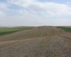 Milli Emlak, Adana Saimbeyli'de 30 bin liraya arazi satıyor!