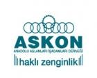 ASKON: Türk yatırımcısı Gürcistan fırsatını kaçırmasın!