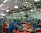 Bozüyük'te Ömür Yemek fabrikası 1 milyon TL'ye satılık!