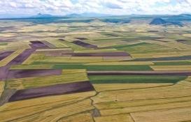 DSİ 4,77 milyon hektar alanda arazi toplulaştırması yapacak!