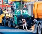 Anamur Türkeş Bulvarı'nda sıcak asfaltlama çalışmaları sürüyor!