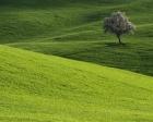 2b arazilerin satışında rayiç bedel ne kadar?