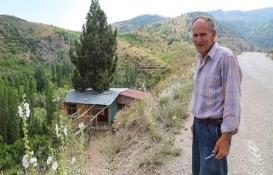 Konya'da bir vatandaş ardıç gövdesinin etrafına ev yaptı!