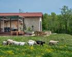 İşte ünlülerin çiftlik evleri!
