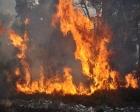 Kastamonu'da esrarengiz yangın!