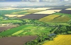 Hazineye ait tarım arazileri kiralanabilecek!