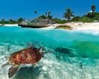 Karayip'te vatandaşlığa kasırga indirimi!