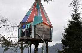Artvin'de 18 metrekarelik lüks ağaç ev yapıldı!