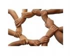 Kooperatif kuruluş aşamaları!