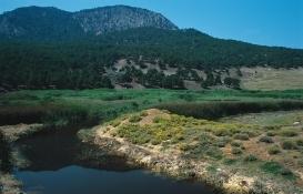 Denizli Karagöl'de doğan sit alanı kesin olarak korunacak!