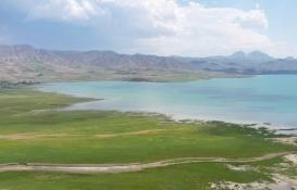 'Flamingo cenneti' Erçek Gölü kesin korunacak hassas alan ilan edildi!