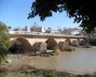 Silifke'de 2 bin yıllık Taş Köprü tartışması!