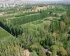 Atatürk Orman Çiftliği'ne yeni yol mu yapılacak?