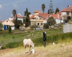 İsrail'den Batı Şeria'da yerleşime onay!