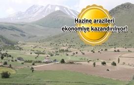 2,2 milyon metrekare hazine arazisi tarıma açıldı!