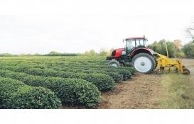 Emin Grup organik tarımda büyüyecek!