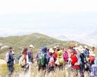 Yabancı turist sayısı ilk 5 ayda 1.2 azaldı!