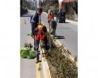 Akçakoca Belediyesi'nin kent yenileme çalışmaları sürüyor!