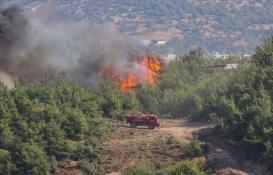 Yangın bölgelerinde konut sigortası poliçelerine ek süre!