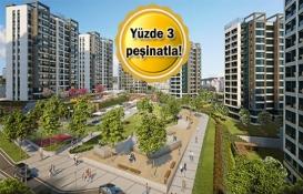 3. İstanbul cadde mağazaları 21 Ekim'de açık artırmayla satışta!