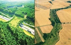 5 soruda ekolojik koridor projesi!