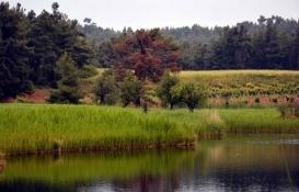 Doğal sit alanları koruma ve kullanma koşulları belirlendi!