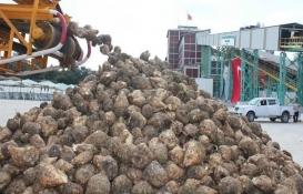 Ilgın, Burdur ve Yozgat şeker fabrikalarının ihaleleri iptal edildi!