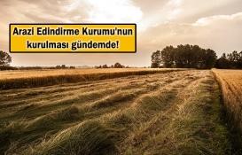 Atıl araziler üretmek isteyene verilecek!