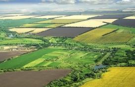 Hazine arazileri çiftçilere nasıl kiralanacak?