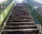 Maltepe'deki 3 köprü yenileniyor!