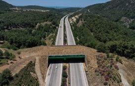 İzmir-Çeşme Otoyolu'ndaki ekolojik köprünün yapımı tamamlandı!