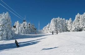 Ağrı Eleşkirt'te kayak merkezi için acele kamulaştırma yapılacak!