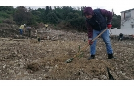 İzmir'de ormanlık alandaki kaçak evler yıkıldı!