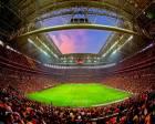 Türk Telekom Arena'nın zemin sorunu çözülemedi!