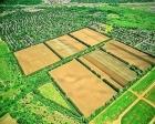 İcra yoluyla satılan tarım arazileri meclise taşındı!