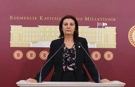 İznik Ayasofya Camii restorasyonu mecliste!