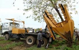 Gebze OSB-Darıca Sahil Hattı için bin 500 ağaç taşındı!