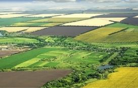 hazine ait tarım arazilerinin satışı