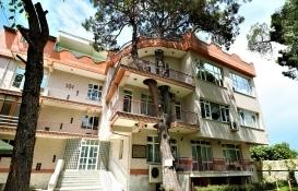 Manisa'da balkonundan geçen 335 yıllık ağaç için imar değiştirildi!
