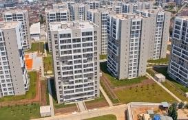 Bizimtepe Aydos'ta 4 iş yeri aylık 3 bin TL'ye kiraya verildi!