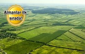 Yabancılar ilk 6 ayda 3.1 metrekare arazi satın aldı!