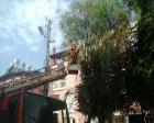 Antakya Belediyesi parkları düzenliyor!