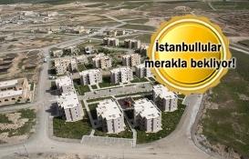 TOKİ İstanbul 2019 kura çekilişleri ne zaman?