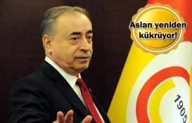 Galatasaray Seyrantepe'de teknokent kuruyor!