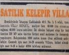 Erenköy'de 2 dönüm bahçe içinde bir villa 60.000 liraya satılacakmış!
