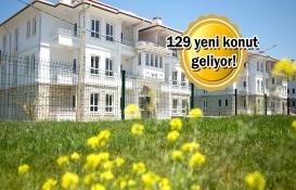 TOKİ İstanbul Şile projesi için düğmeye bastı!