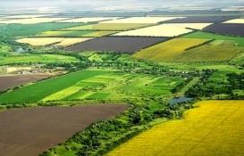 Hazineye ait atıl tarım arazileri üretime açılıyor!