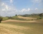 Tarım arazisi satışı 2015!